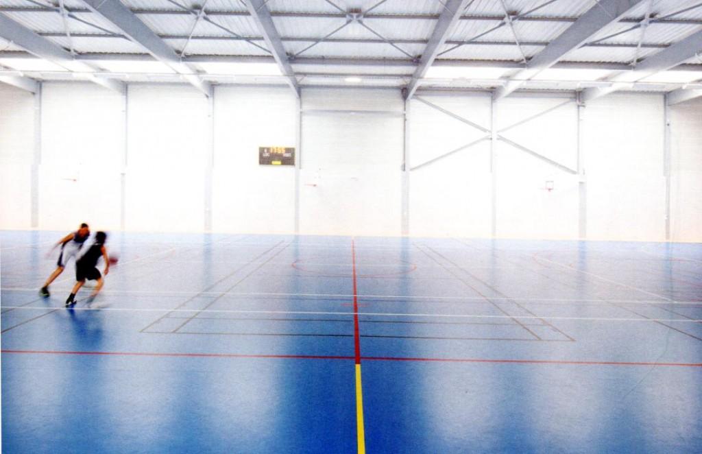 Salle de sport Antoine Rigaudeau au Pellerin (44), D. Le Borgne architecte, 2013